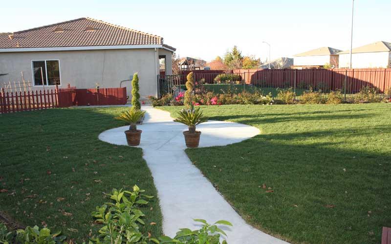 Backyard4.jpg